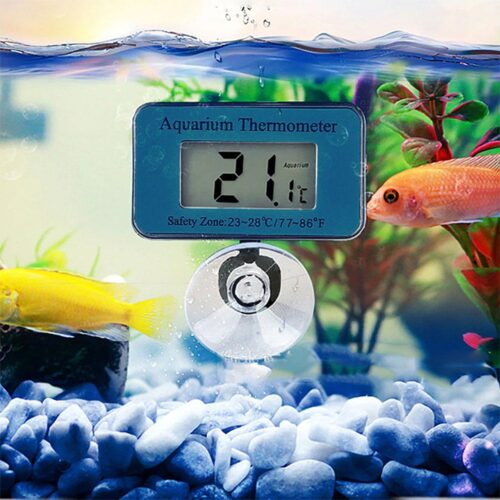 Termometer till akvarium - Trådlös digital m sugpropp